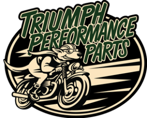 Triumph Motorcycle Spark Plug Wires